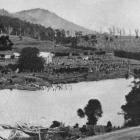A scene on the Owaka River, showing Jacob's Hill in the background. - Otago Witness, 3.1.1917.