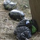 Bags of household rubbish discarded in the Port Chalmers green belt, below Church St, yesterday....