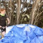 After a long bike ride from Makarora, Callum Hockey (14), of Auckland, sets up his tent at the...