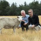 AgResearch scientists David Scobie (left) and Jeff Plowman examine Sharon the mutant sheep. Photo...