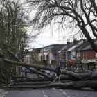 A woman was killed by falling debris in Storm Doris. Photo: Reuters