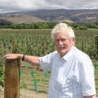 Central Otago orchardist Con van der Voort stands next to 18ha of new apple plantings in...