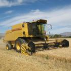 A farming survey highlights facts about pay in the rural sector. Photo from ODT files.