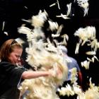Charis Morrell competes in the woolhandling at the World Shearing and Woolhandling Championships...