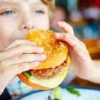 Researchers want officials to curb the use of sophisticated junk food marketing schemes that...