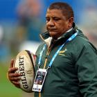 Allister Coetzee. Photo Getty