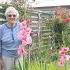 IMG 6592: Margaret Knowles of Te Anau, a longtime exhibitor of the show displays her Gladioli...