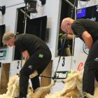 Prime Minister Bill English takes on five-time shearing champion David Fagan at the World...