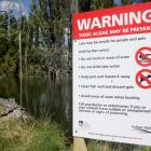 A sign next to the Albert Town lagoon warns people about the presence of a potentially toxic...