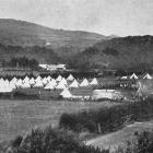 A view of the Coast Defence camp at Waitati. - Otago Witness, 14.3.1917.