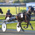 Martin McGuinness sprints along the Ascot Park passing lane to notch another win for the...