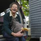 The scene-stealing Brian Glassey with one of his prize-winning barred Plymouth Rock chickens.