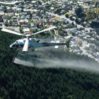 A helicopter sprays herbicide on wilding trees above Queenstown. Photo: ODT files.