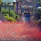 The annual Dunedin Jaffa race. Photo: ODT
