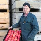 Ettrick orchardist Stephen Darling holds some crisp produce at his packhouse. Photo: Jono Edwards