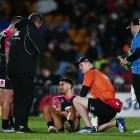 Shaun Johnson has his knee injury looked at on Saturday. Photo: Getty Images