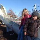 Damage to the fibreglass on Wanaka's famous dinosaur slide means it is off limits at the moment...
