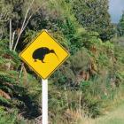 A sign warning of kiwi on a road near Okarito. Photo Getty