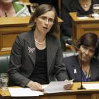 New Zealand's only deaf MP, the Green Party's Mojo Mathers, fully supports the petition. Photo:...