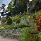 The Dunedin Botanic Garden. Photo: ODT files