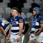 Auckland rugby players react during their loss to Otago earlier in the year. Photo: Getty Images