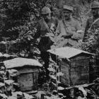 Behind the lines on the Meuse. French troops set up these beehives to secure a stock of honey to...