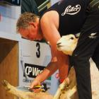 Fairlie blade shearer Tony Dobbs, pictured in Invercargill earlier this year, has won another...