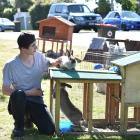 Amelia Seals' flatmate, Joshua Town-Treeweek, spends his afternoon looking after the 19 rabbits...