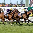 Son Of Maher (outer) and Shadows Cast cannot be separated at the end of yesterday's group 2...