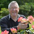 Retired trainer Hec Anderton enjoys  time in his Wingatui garden. Photo: Gerard O'Brien