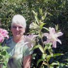 Otago Lily Society member Margaret Dodds is happy that at least some of her lilies, including...