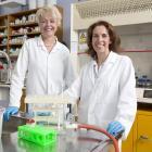 University of Otago staff Associate Prof Natalie Medlicott (left) and Dr Ailsa McGregor, together...