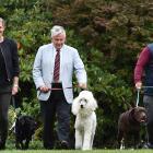 Walking down the Selwyn College lawn yesterday are Caroline Hepburn-Doole (left), of Knox College...