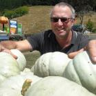 Teviot Valley pumpkin grower Darryl Peirce looks over his crown pumpkins, which have ripened a...