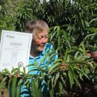 Georgetown orchardist Helen Brookes, holding the certificate acknowledging plant variety rights,...