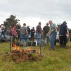 Traditional tea brewed in billies over a permitted open fire will be on offer as part of the host...