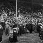 The crowd in the public grandstand and on the lawn at the Dunedin Jockey Club's autumn meeting at...