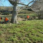 Offenders on community work carry out repairs to a farm fence after flooding near Balclutha last...