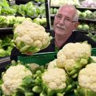 "Veggie Boys Albany St owner Marty Hay with what he reckons is the ""cheapest cauliflower in the..."