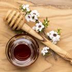 Comvita - Manuka Honey is a world-class brand.