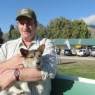 Wanaka A&P Show Jack Russell race organiser Richard Burdon with a 7-year-old Jack Russell...