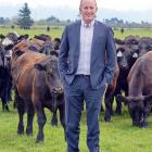 Southland farmer Andrew Morrison is the newly-elected chairman of Beef + Lamb New Zealand. Photo:...