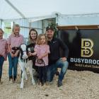Nathan and Amanda Bayne, from Busy Brook Holsteins, with their daughters Brooke, Sophia and Lilly...