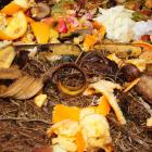 The Dunedin City Council is discussing options for an organic waste disposal service. Photo:...