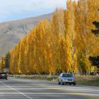 Autumn poplars overlook the Ripponvale straight near the Highlands corner. The ORC is proposing...