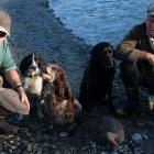 Bill Johnsen (left),  dogs Belle, Ferne and Georgie, and Pete Southee scope out the Manuherikia...
