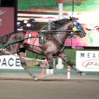 A Rocknroll Dance was New Zealand's most popular standardbred sire this season. Photo: Supplied.