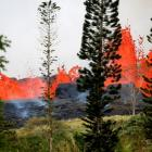 Lava erupts on the outskirts of Pahoa during ongoing eruptions of the Kilauea Volcano in Hawaii....