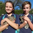 Glenavy School pupils Anna Mansfield (11) and Reuben Dann (11) with the school's pet rabbits,...