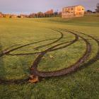 Damage to Awamoa Park caused by vandals on Friday night. Photo: Andy Lane